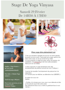 stage de flow yoga